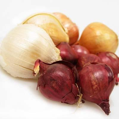 Image of  Garlic and Onions Other