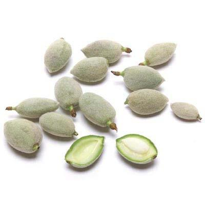 Image of  Green Almonds Other