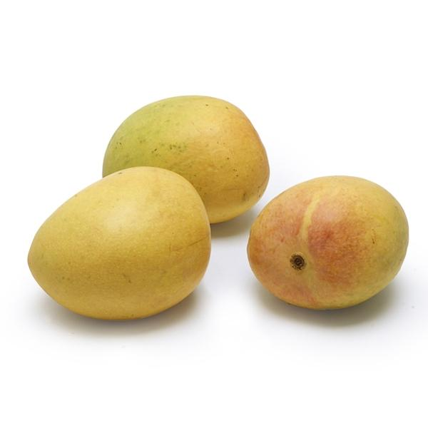 Image of  Indian Mango Fruit