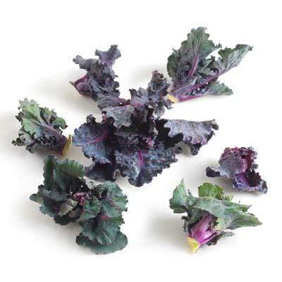 Image of  Kale Sprouts Vegetables