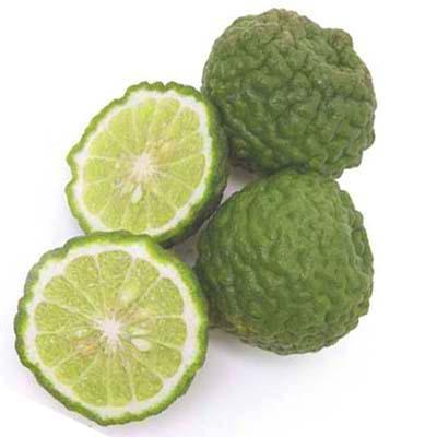 Image of  Kieffer Limes Fruit
