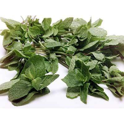 Image of  Mint Other