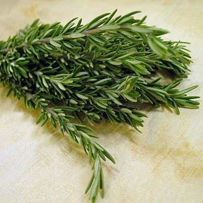 Image of  Rosemary Other