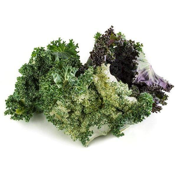 Image of  Salad Savoy Vegetables