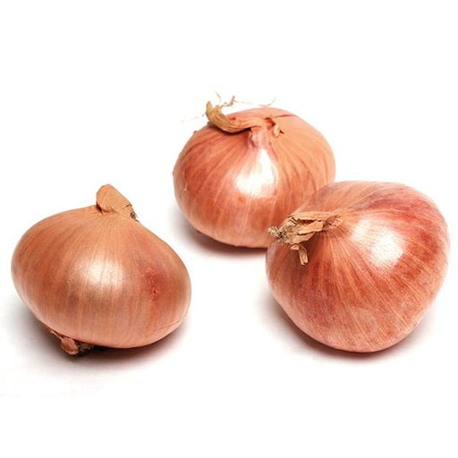 Image of  Shallots Vegetables