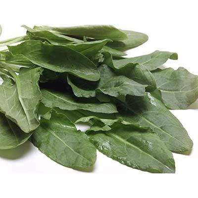 Image of  Sorrel Other