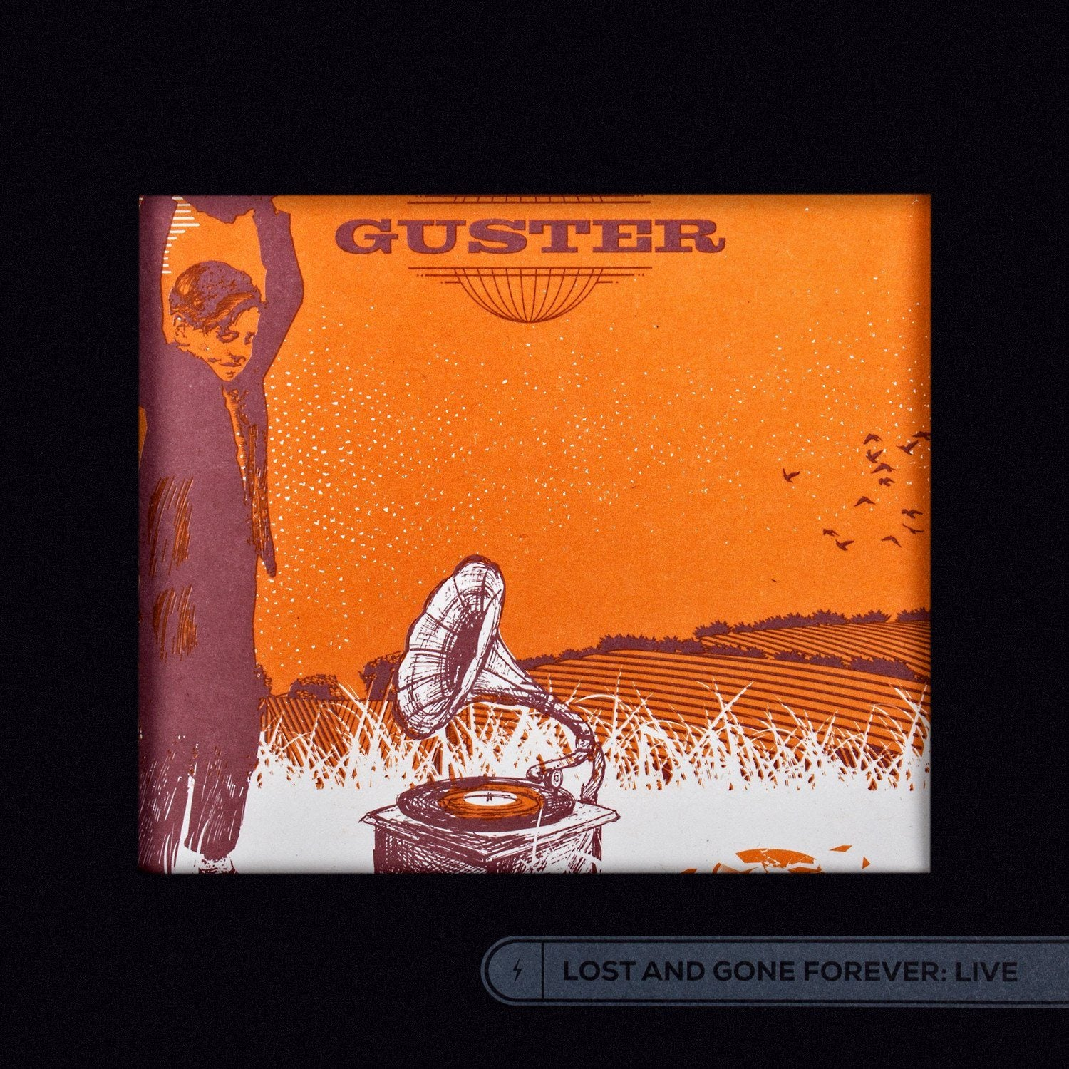 Guster 'Lost And Gone Forever: Live' MP3 / CD
