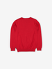 Skating Rabbits Kids Jumper Red