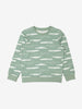 Boys Car Print Green Sweatshirt