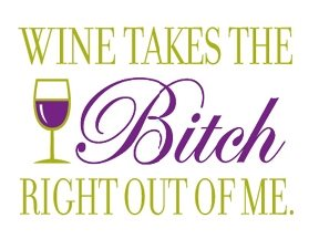 Wine Takes the Bitch Right Out of Me Fridge Magnet