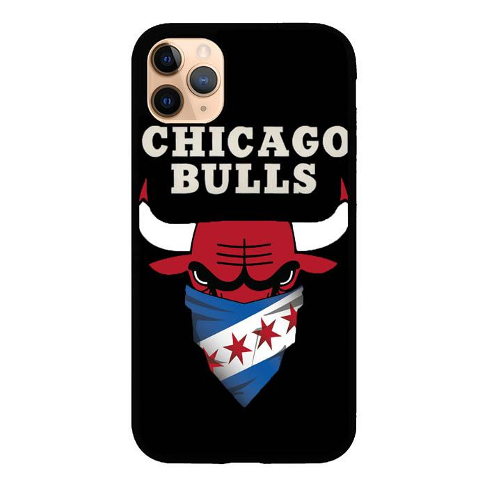 Chicago Bulls A0213 iPhone 11 Pro Max Case