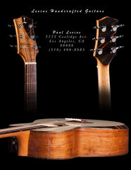Paul Levine Guitars