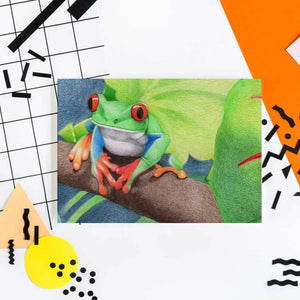 Image of drawing of a tree frog with a bright orange and patterned background.