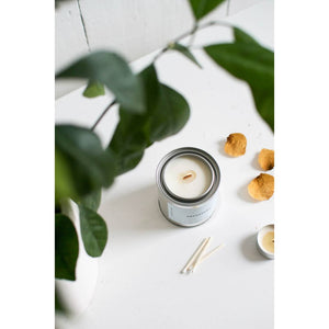 Succulent | Citrus + Coconut + Sandalwood Candle