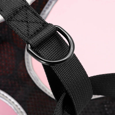 CatPrestige® Colorful Nylon Cat Harness