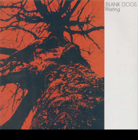 Blank Dogs/Waiting b/w Splitting