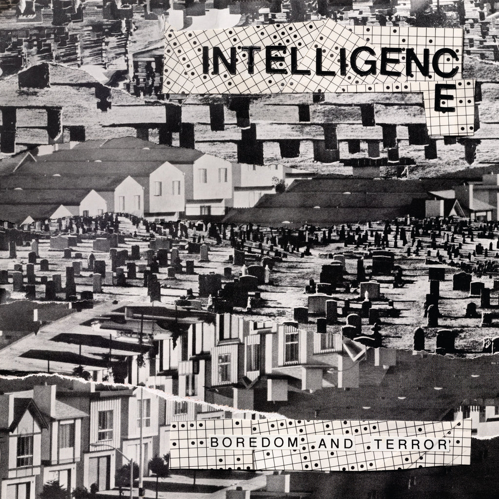 The Intelligence-Boredom & Terror