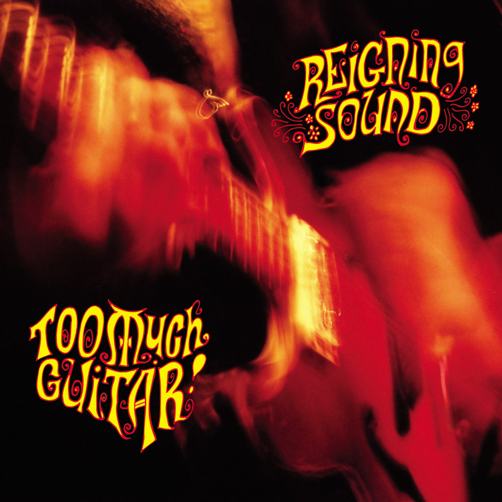 Reigning Sound/Too Much Guitar