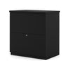 Modern Black Locking Lateral File