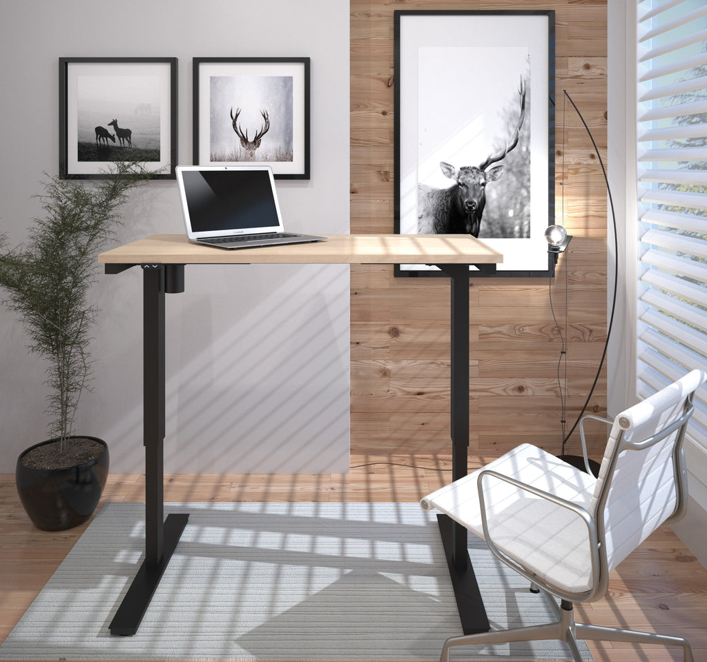 "Modern 48"" Office Desk in Northern Maple with Electric Height Adjustment from 28 - 45"""