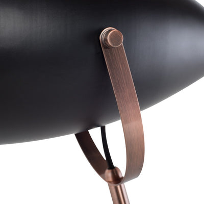 Stylish Matte Black and Copper Floor Lamp
