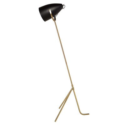 Stylish Matte Black and Brass Floor Lamp