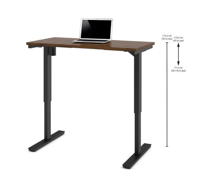 "Modern 48"" Office Desk in Oak Barrel with Electric Height Adjustment from 28 - 45"""