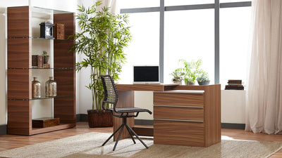 Walnut Convertible Desk / Storage Cabinet with Slide-out Top