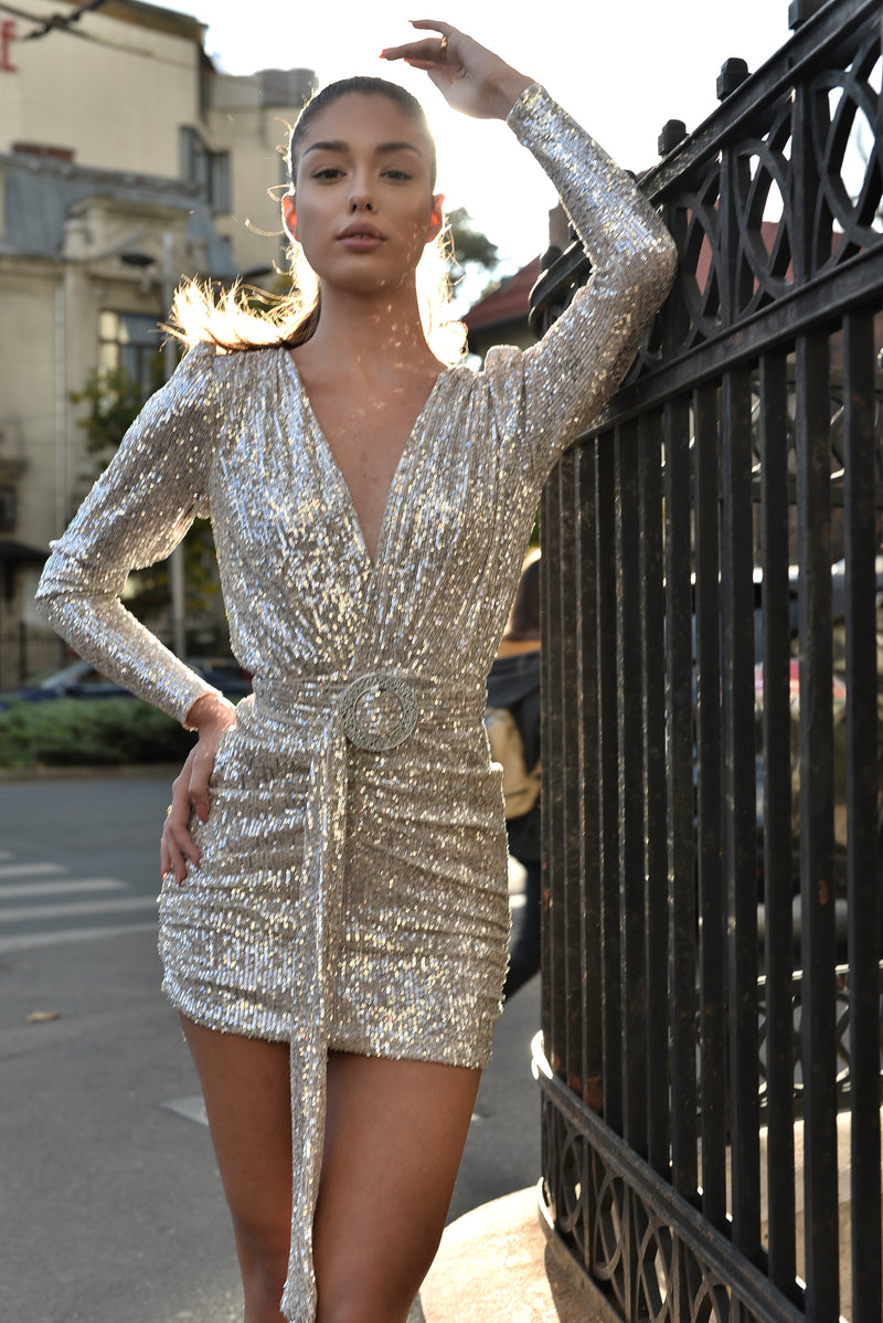 Alyna Silver Sequins Dress details.