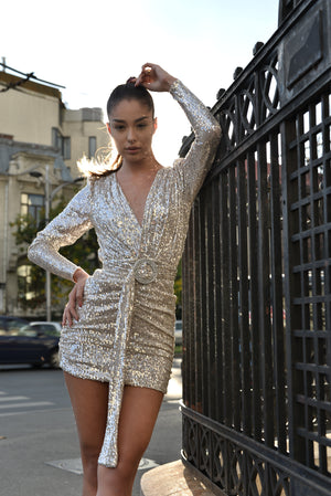 Silver Sequins Dress full body.