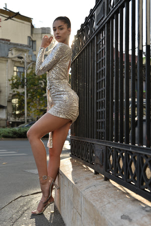 Sequins Mini Dress.
