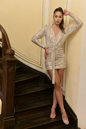 Alyna Silver Sequin Dress for elegant parties.