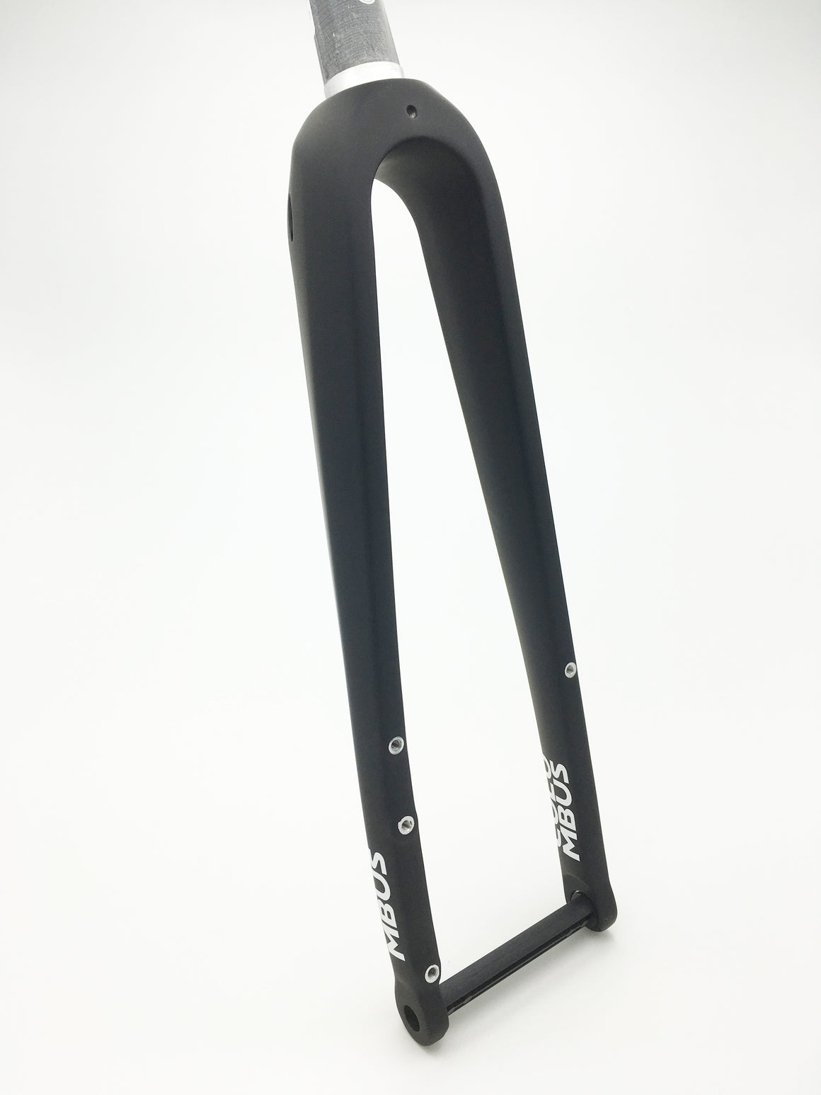 Columbus Futura Gravel disc fork - painted - rear 3/4 view