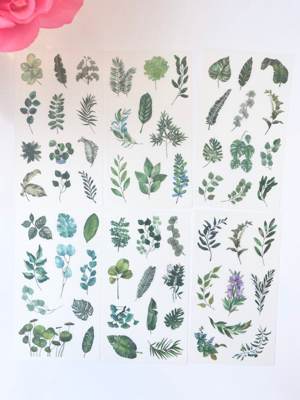Tropical Plants Clear Planner Stickers - Set of 6