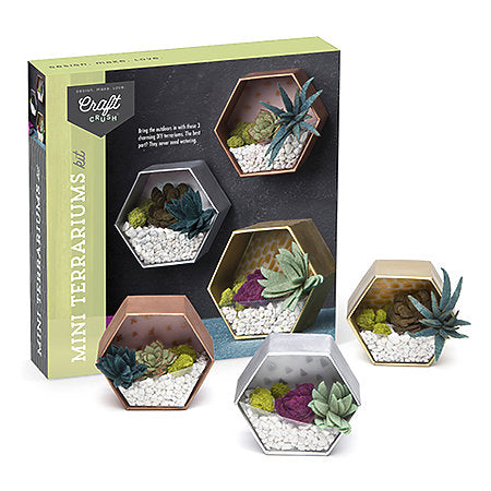 Craft Crush Mini Terrariums Kit - by Ann Williams - K. A. Artist Shop