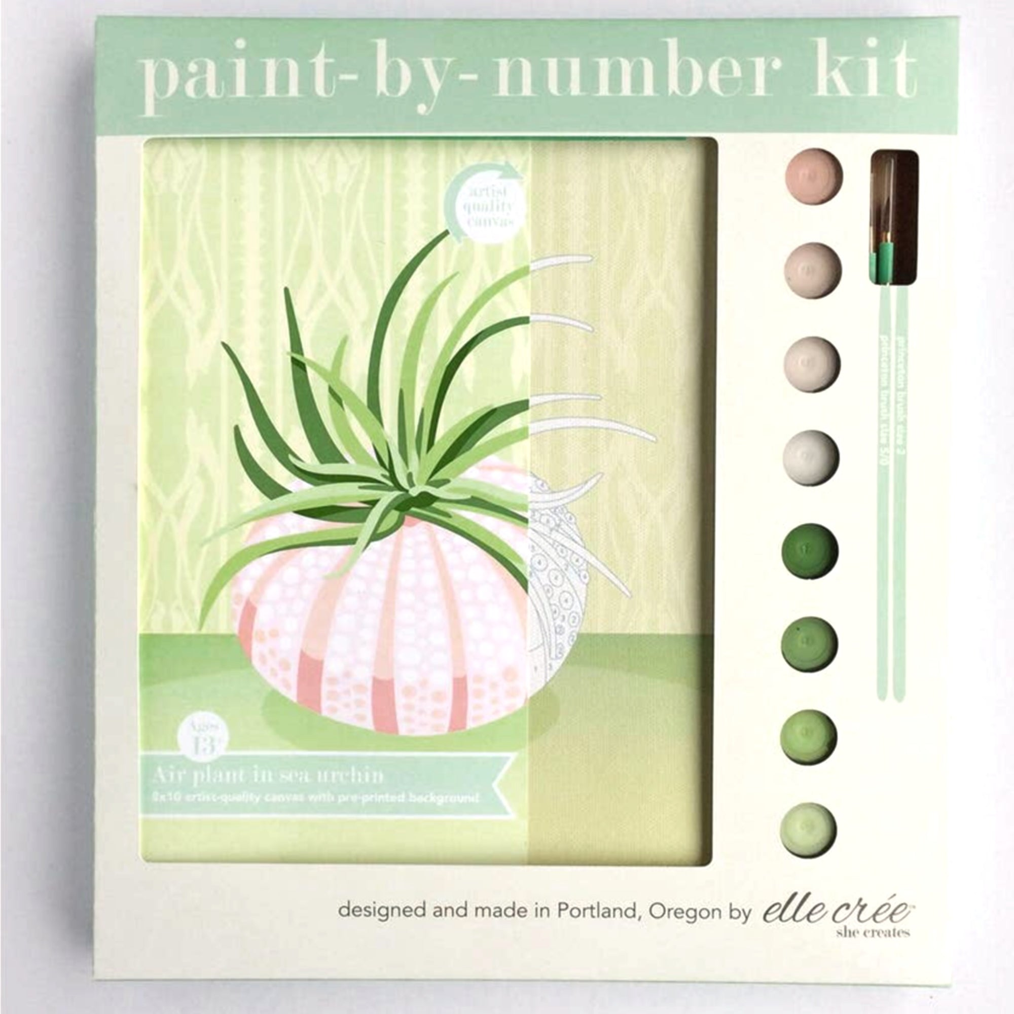 """Air Plant in Sea Urchin"" Paint-by-Number Kit by elle crée"