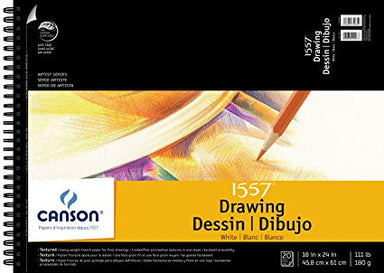 "Canson ""C A Grain"" 111 lb. Drawing Paper Single Sheets - 19.5 x 25.5 inches - by Canson - K. A. Artist Shop"