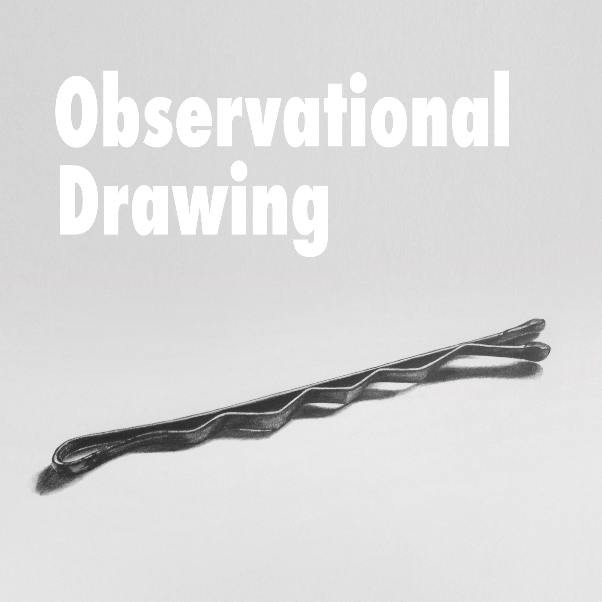 Observational Drawing with Kendal Jacques