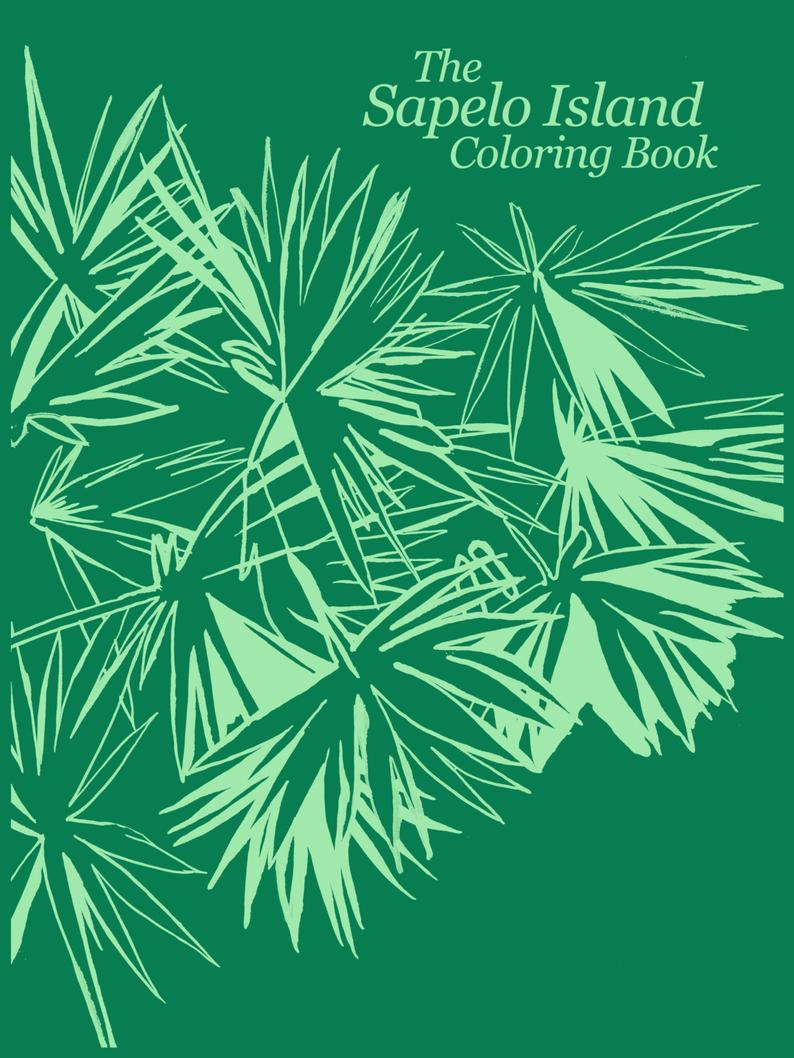 """The Sapelo Island Coloring Book"" by Abigail West - by Abigail West - K. A. Artist Shop"