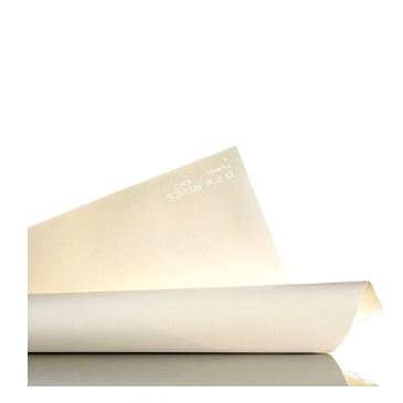 Arches BFK Rives Cold-Pressed Sheets - 250/280 gsm - 22 x 30 inches - by Arches - K. A. Artist Shop
