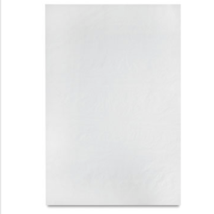 Canson Glassine Paper - Single Sheet - 25 lb. - 24 x 36 inches
