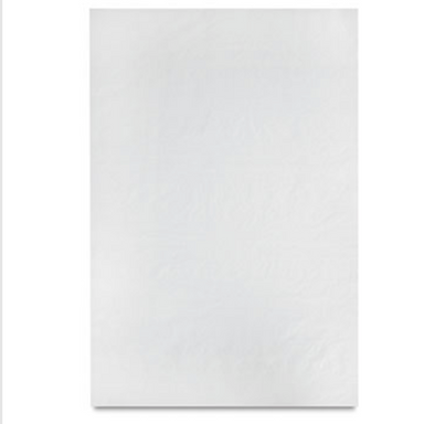Canson Glassine Paper - Single Sheet - 25 lb. - 24 x 36 inches - by Canson - K. A. Artist Shop