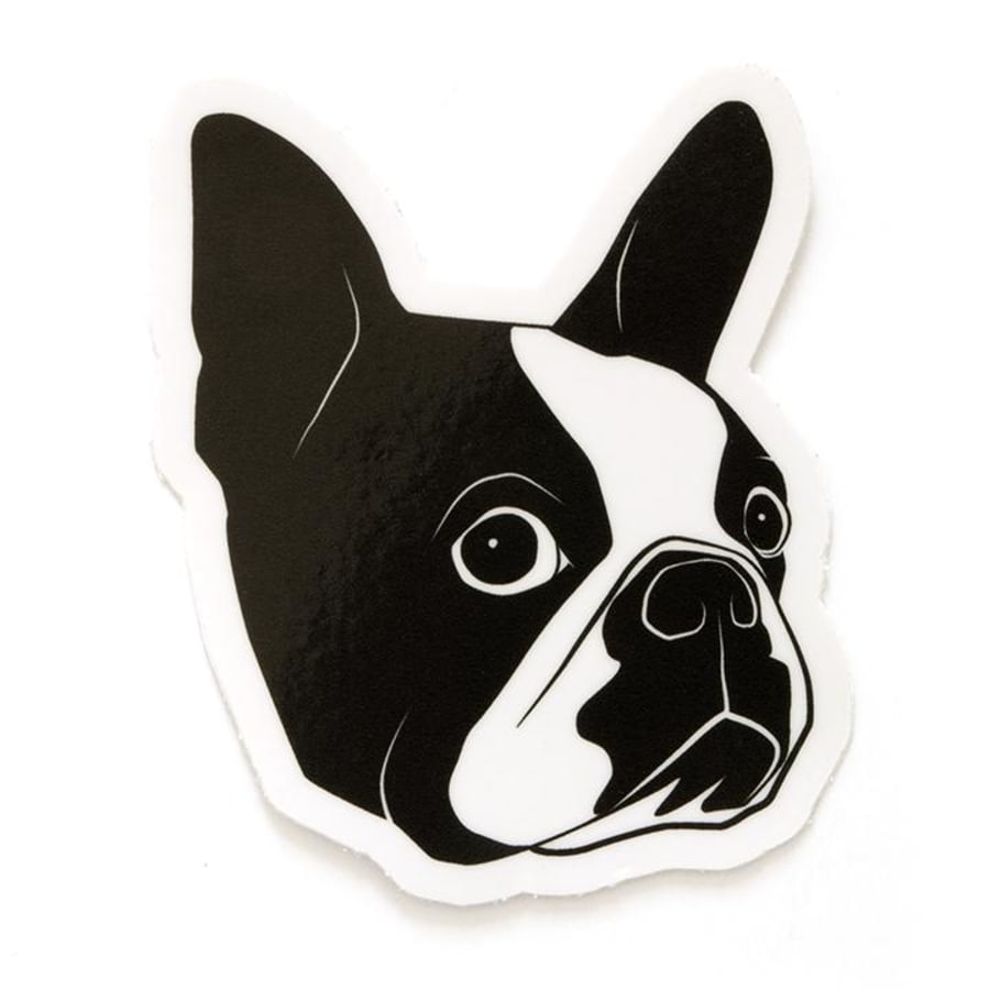 Smarty Pants Boston Terrier Sticker