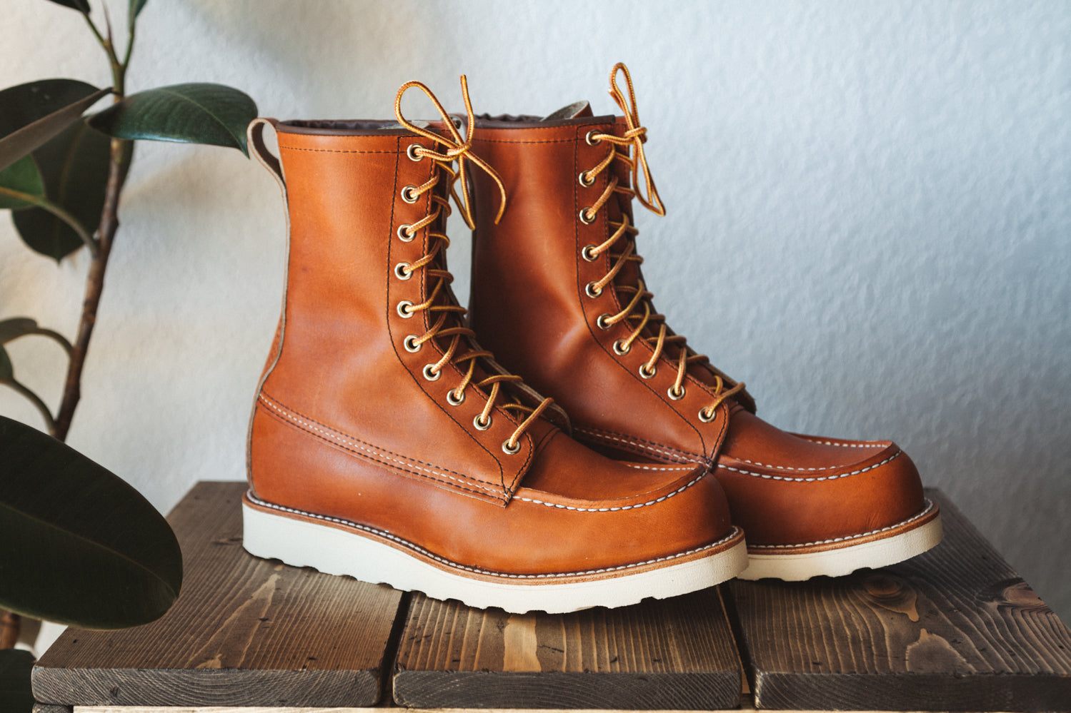 2df51b2035a Red Wing 8