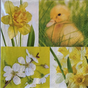 Yellow Spring Napkins