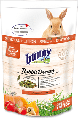 Bunny Nature Rabbit Dream Special Edition