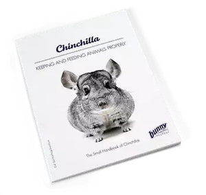 Bunny Nature Book Chinchilla