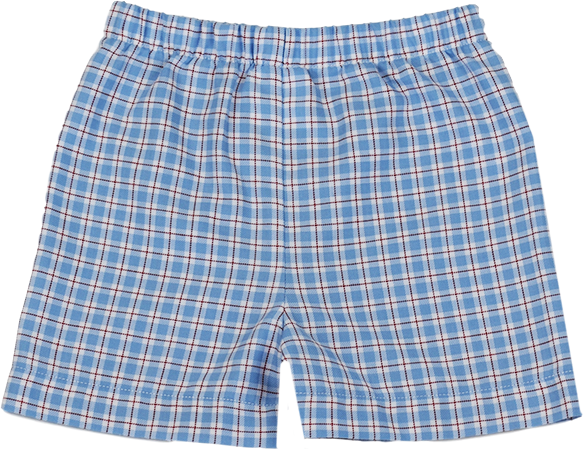 Stewart Short - Red/Blue Plaid