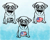 PUG whit tummy USA Flag with Feathers SVG mops sublimation merica patriotic Flag American 4th of July pugs belly dog face puppy 1776s