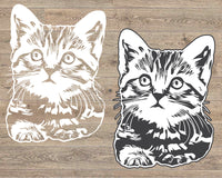 MEOW SVG Cat clip art meow cat lover peekaboo crazy cat lady Kitten png eps jpg dxf jpeg cats kitty Milk